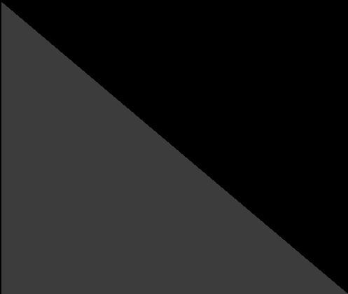 Gris foncé/Noir