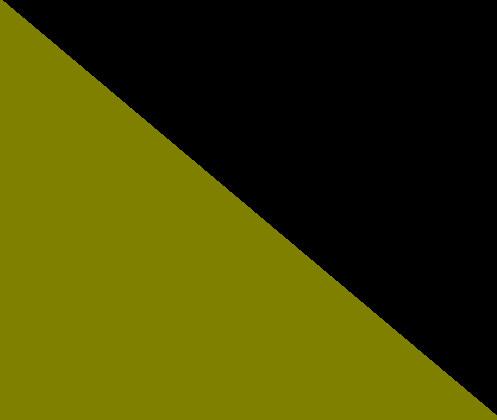 Kaki / Noir