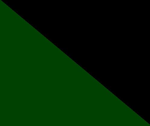 Vert forêt / noir